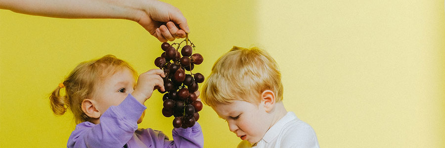 10 Healthy Toddler Meal Ideas