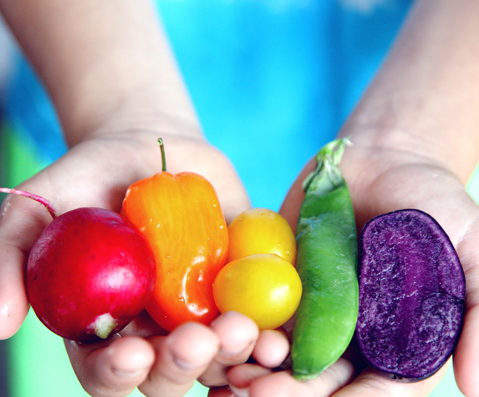 Healthy Eating For Picky Eaters: 7 Tips To Keep Them Healthy